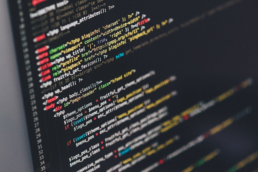 5 Things to Consider In Choosing an Custom Web Development Company